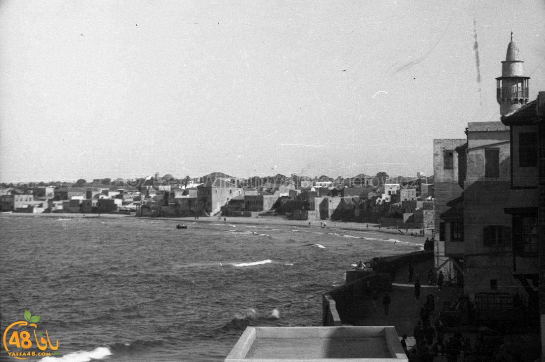 يعود تاريخها لسنوات الثلاثينات .. صور نادرة جداً لميناء يافا