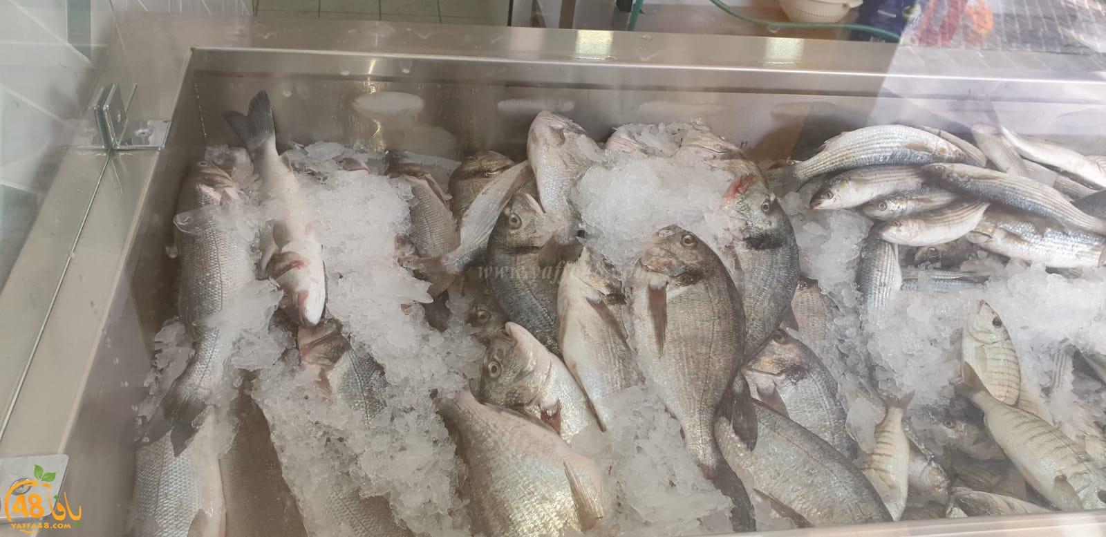 يافا: انتقال مطعم fish & chips للأسماك الطازجة الى مخزن 1 بميناء يافا