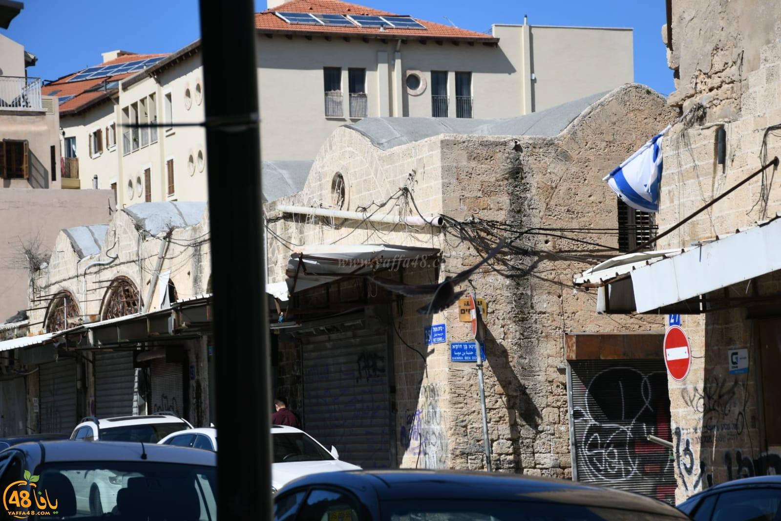 بالصور: صديق الموقع يُوثّق مراحل بناء حمامة لعشها في يافا