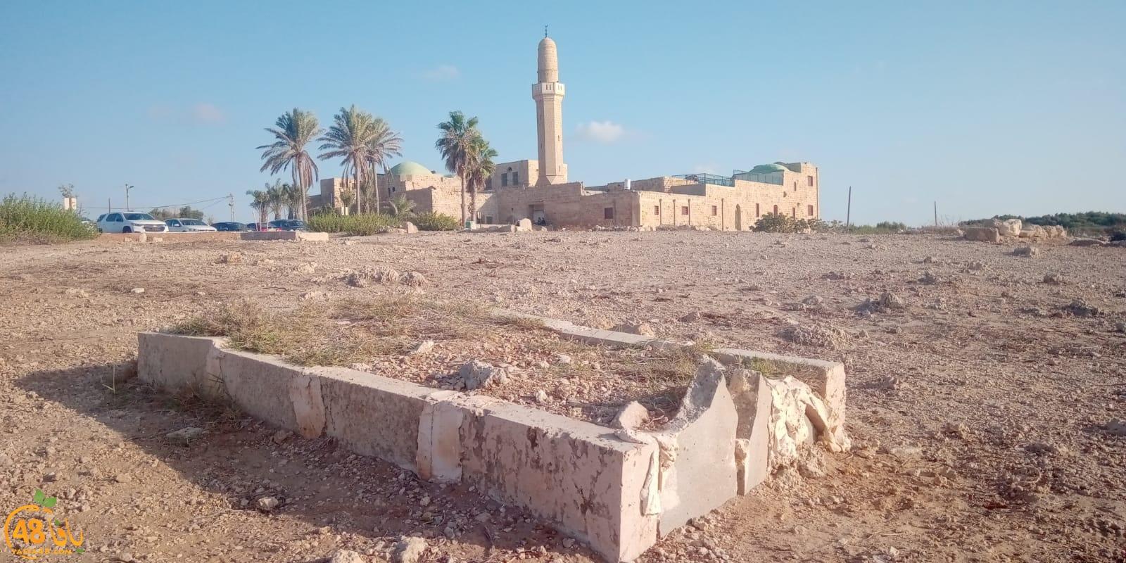 فيديو: الناشط عبد شقرة يجب اغلاق مقبرة سيدنا علي في قرية الحرم المهجّرة قضاء يافا