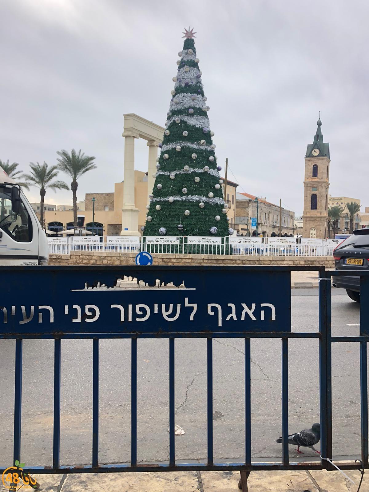 صور: استعدادات لاضاءة شجرة عيد الميلاد في مدينة يافا الأحد المقبل