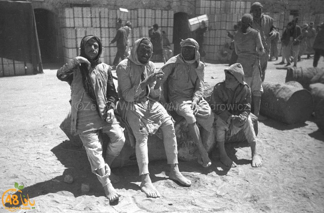تُنشر للمرة الأولى - صور نادرة جداً لميناء يافا يعود تاريخها لسنوات الثلاثينات
