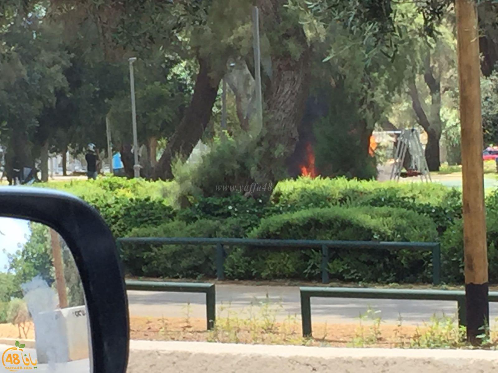 بالصور: حريق داخل حديقة ألعاب للأطفال في مدينة يافا دون اصابات