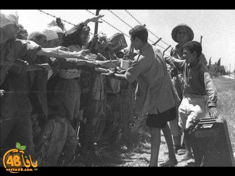 أيام نكبة| صور نادرة لهجرة أهالي مدينتي اللد والرملة عام النكبة