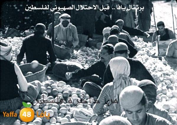 فقط عبر يافا48 - صور نادرة جداً لمدينة يافا قبل عام 1948