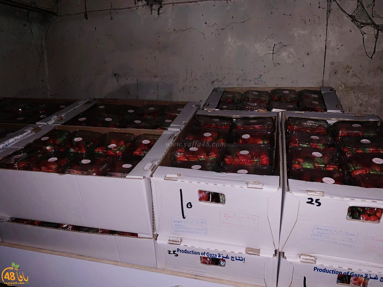 الشرطة: ضبط مئات صناديق الفراولة المهربة من غزة في تل ابيب
