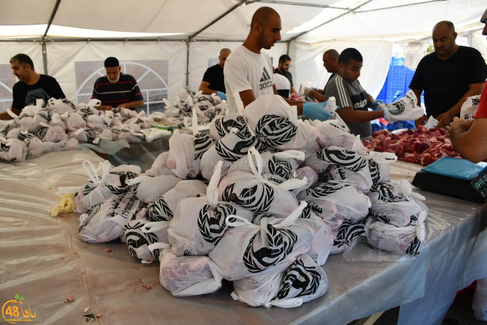بالفيديو: حصاد مشروع إحياء سنة الأضاحي في يافا لهذا العام