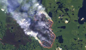 رئة العالم تحترق.. 2500 حريق جديد بالأمازون وتحذيرات من الأسوأ