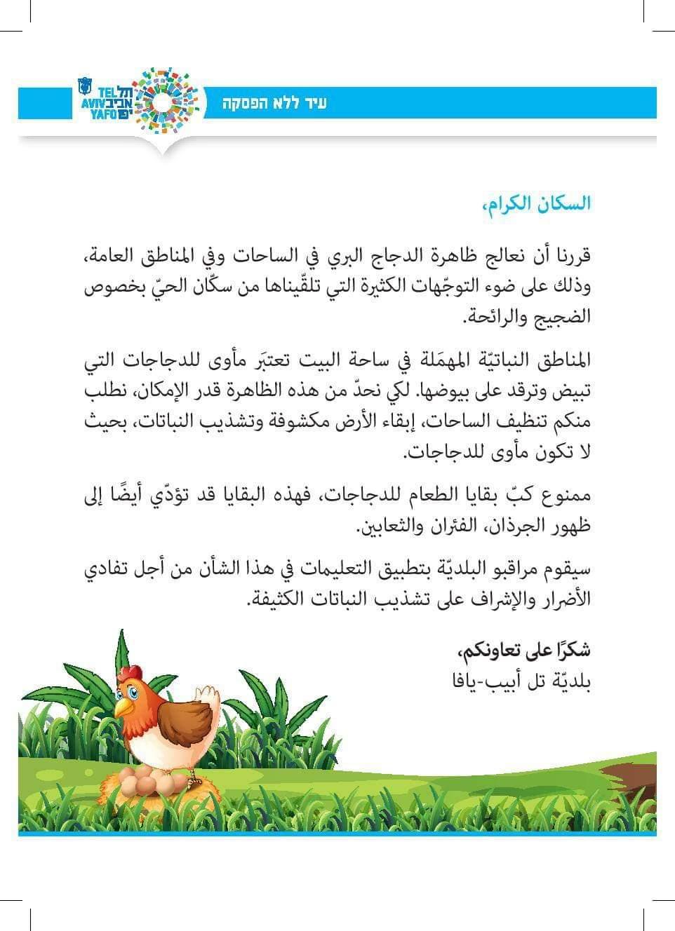 يافا: البلدية تعثر على عدوها الجديد وتقرر محاربة الدجاج والديوك بالمدينة