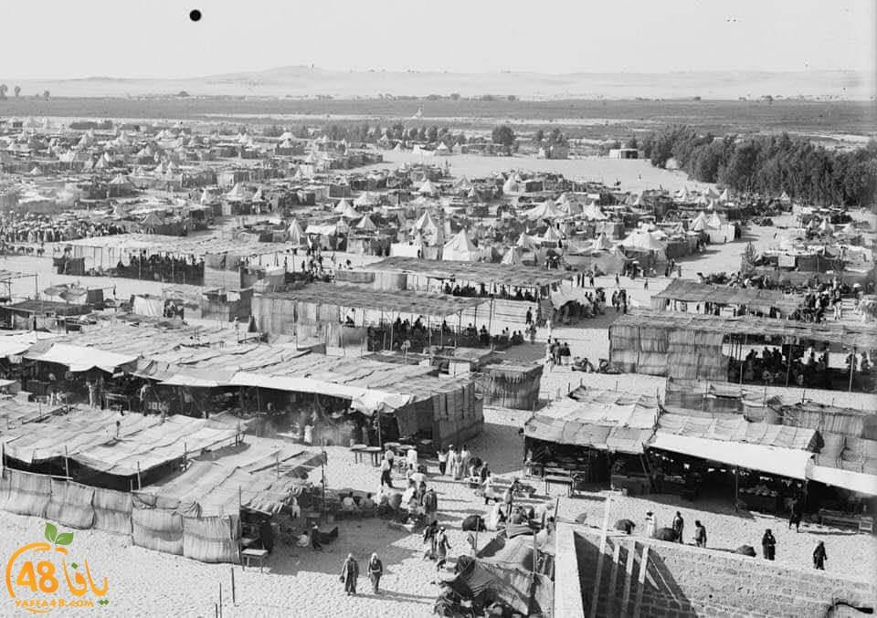 مع اقتراب موسم روبين - صور نادرة للموسم تعود لعام 1930
