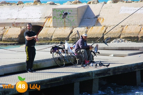 من أرشيف يافا 48 - باقة من الصور لميناء يافا وشاطئ البحر عام 2015