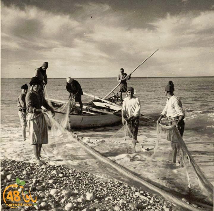 مشهد من الماضي - حياة الصيادين وعملهم في ميناء يافا قبل عام النكبة 1948