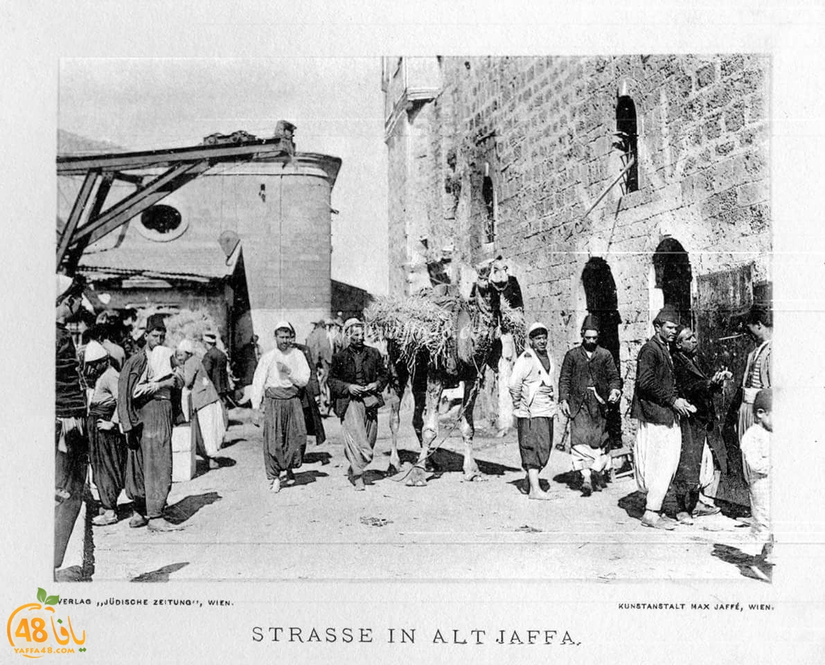 ننشر صورة ونشحذ ذاكرة - صور نادرة ليافا بين عامي 1920 و1940